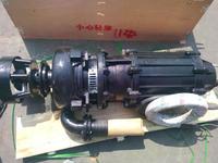 ZJQ潛水渣漿泵,潛水渣漿泵工廠