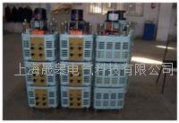 TESGC2系列三相電動調壓器