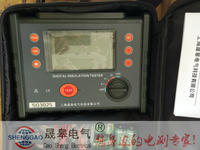 防雷絕緣電阻測試儀_防雷檢測儀器設備 SG3025