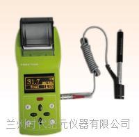 TIME5306里氏硬度計  TIME5306