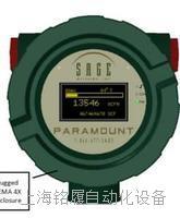 SAGE300熱式氣體質量流量