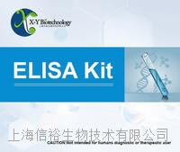 大鼠血管性血友病因子檢測試劑盒,VWF試劑盒