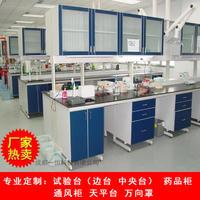 溫江地區實驗室通風柜 實驗全鋼實驗臺中央臺