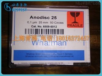 whatman 6809-6012 无机膜AAO模板 25mm 0.1um Anodisc25
