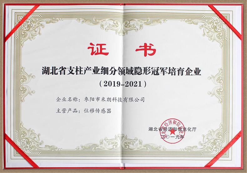 湖北省支柱产业细分领域优越证书