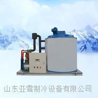 德兰雪30吨大型工业片冰机