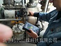 DEU300电磁超声测厚仪