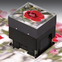 NKK可编程开关OLED带显示屏按钮型号ISF15ACP4现货批发