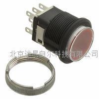 日本NKK发光按钮开关 LB15CKW01