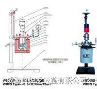 实验用磁力反应釜 WDFS