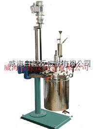 高压不锈钢磁力驱动反应釜 WHFS