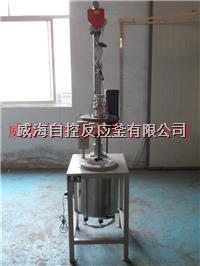 5L/10L釜盖升降型高压反应釜