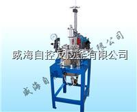 5L实验高压反应釜 WHFS-5L