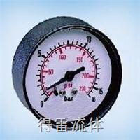 微型压力表