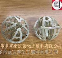 塑料双星球填料 φ25 φ38 φ50 φ76 φ90(mm)