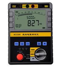 数字绝缘电阻测试仪 BC2306