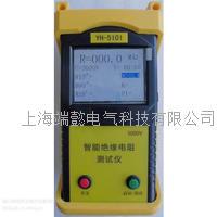 YH-5101智能绝缘电阻仪,绝缘电阻测试仪,数字式绝缘电阻测试仪 YH-5101