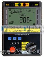SDY2303数字绝缘电阻测试仪