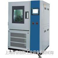 低温耐寒试验机 XH-TF190