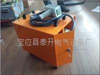 SF6气体定量检漏仪 TK2013