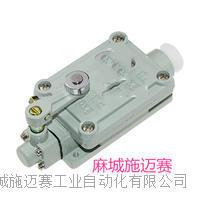 耐高温限位开关1LS-J50H M3V4D330-11Y-RMS