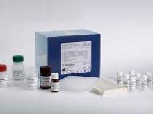 96T,48Tβ-lactamase试剂盒,鸡β内酰胺酶Elisa试剂盒