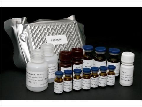 96T,48TANG-Ⅱ试剂盒,兔血管紧张素ⅡElisa试剂盒