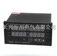 带通讯多路温度测试仪 XMTJK811K/2K