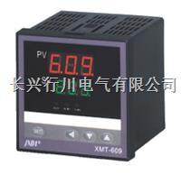 4路串口通讯可编程温湿度控制器 XMTHKPK