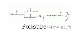 磷脂聚乙二醇活性酯(DSPE-PEG-NHS) MW:2000