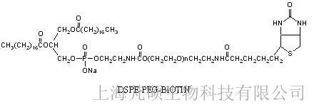 磷脂聚乙二醇生物素(DSPE-PEG-BIOTIN) MW:3400
