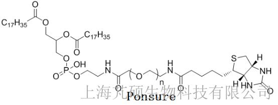 磷脂PEG-生物素