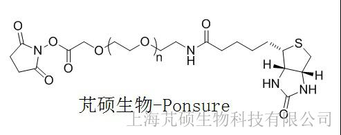 生物素PEG-活性酯