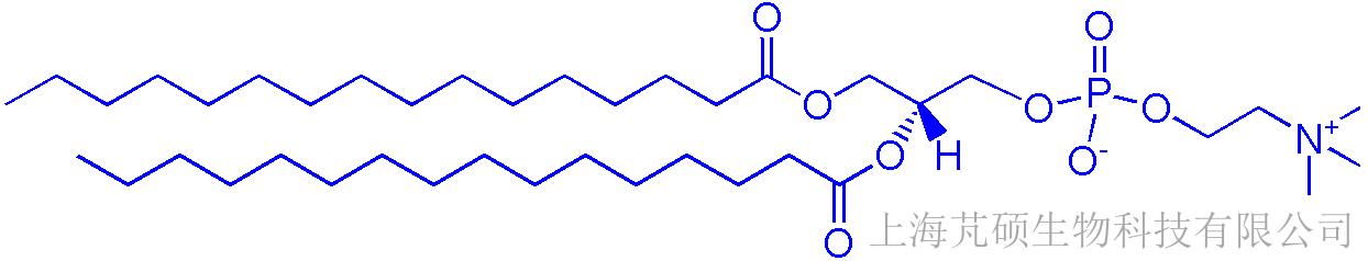 63-89-8,DPPC 二棕榈酰磷脂酰胆碱