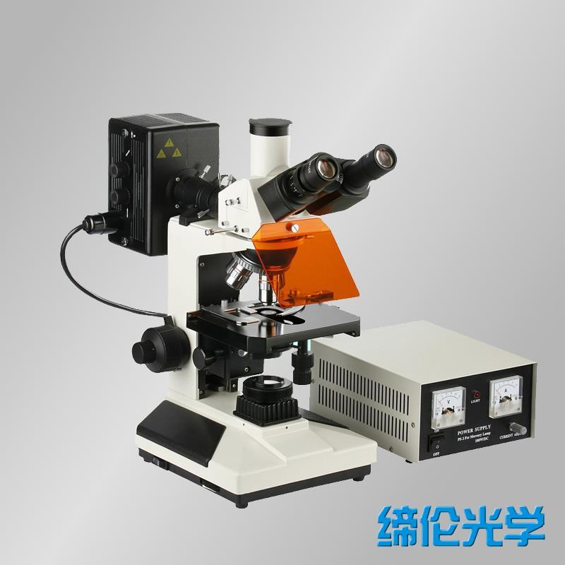 CFM-300正置落射蓝绿激发荧光显微镜