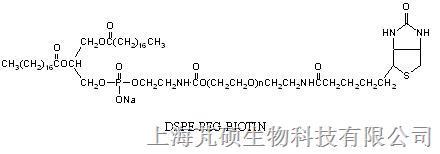 磷脂PEG生物素  DSPE PEG Biotin