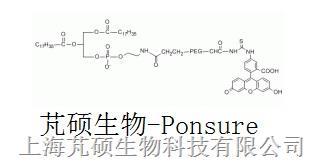 荧光素PEG磷脂  FITC-PEG-DSPE